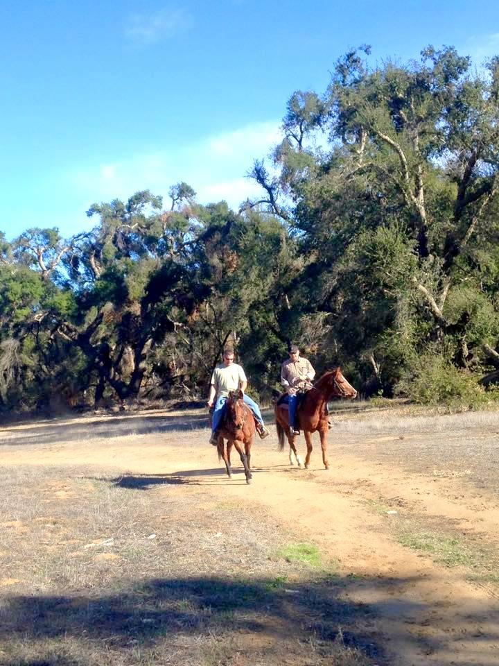 Horseback riding murreita